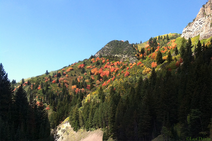big