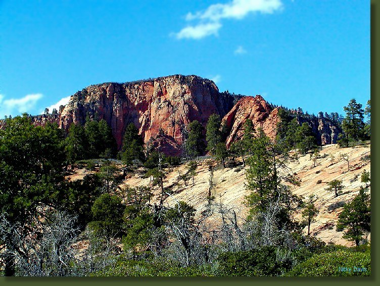 Wildcat area in route to Kolob Reservoir